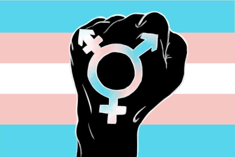 #TERF - Trans ausschließender radikaler Feminismus 1
