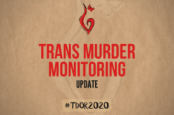 #tdor2020 - Trans Murder Monitoring Update zum Transgender Day of Remembrance 2020 #tdor2020kn 1